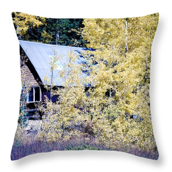 Cabin Hideaway Throw Pillow by James BO  Insogna