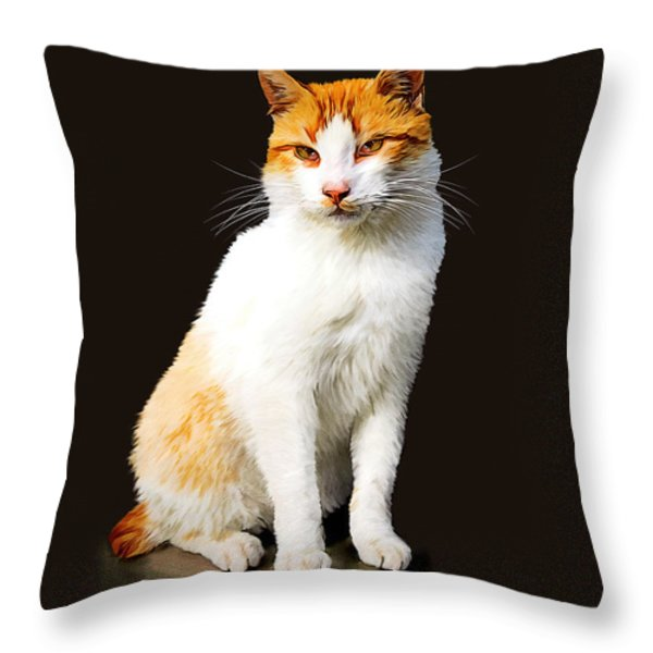 Calico Throw Pillow by Tom Schmidt