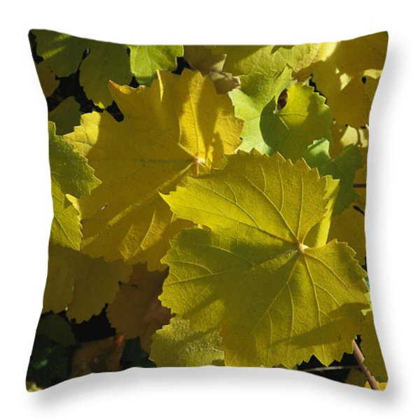 California Wild Grape Leaves Vitis Throw Pillow by Marc Moritsch