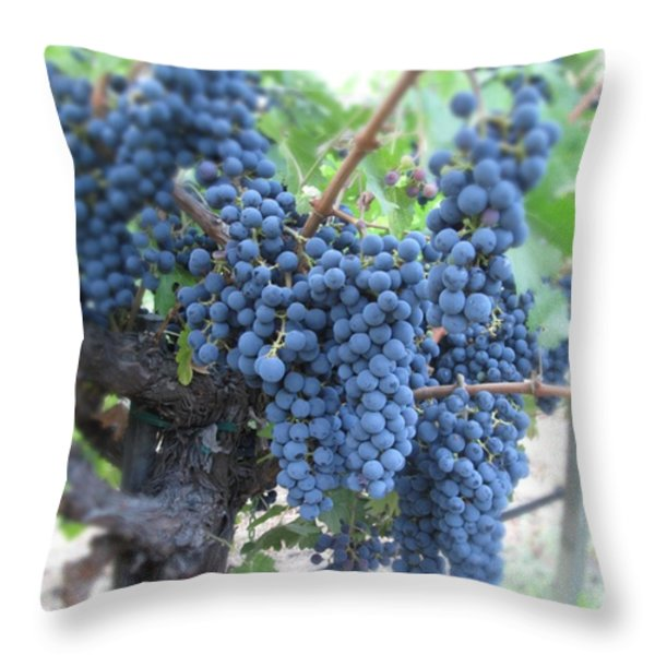 Calistoga Bloom Throw Pillow by Jean Macaluso