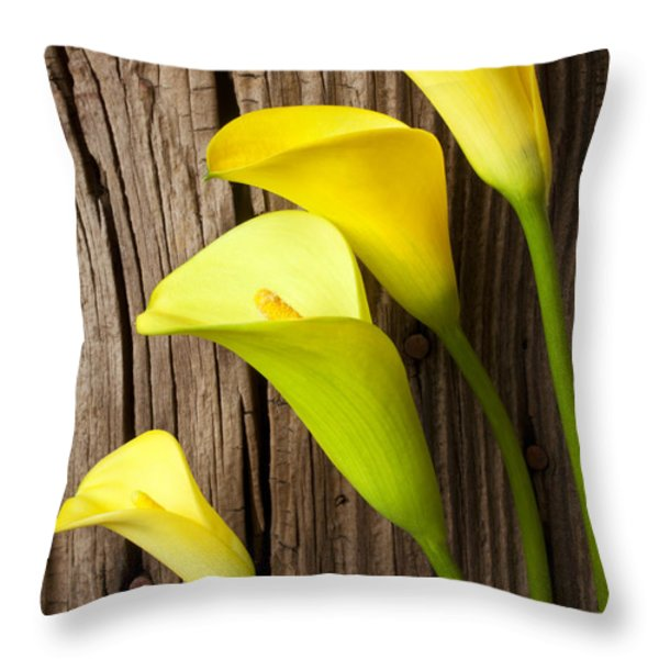 Calla lilies against wooden wall Throw Pillow by Garry Gay
