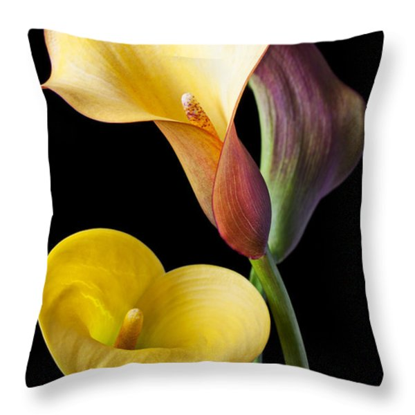 Calla Lilies Still Life Throw Pillow by Garry Gay