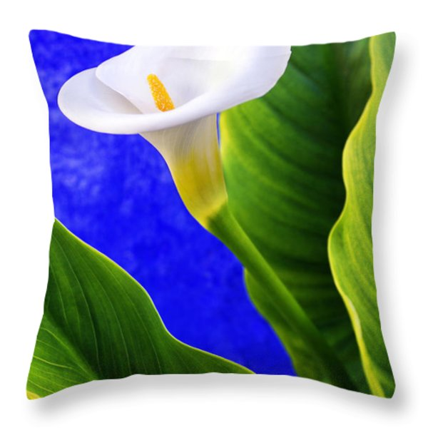Calla Over Blue Throw Pillow by Carlos Caetano