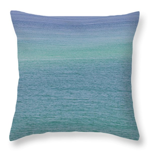 Calm Waters Throw Pillow by Toni Hopper