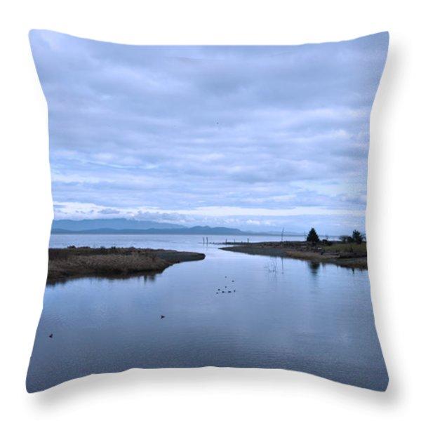 Calmer Waters Throw Pillow by Travis Crockart