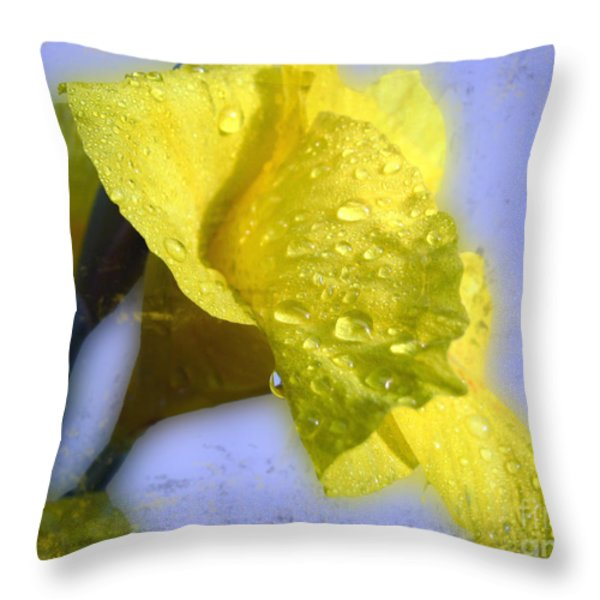 Canna in the Morning Throw Pillow by Todd A Blanchard