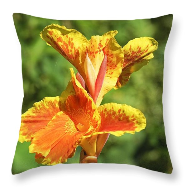 Canna Lily Throw Pillow by Kenneth Albin