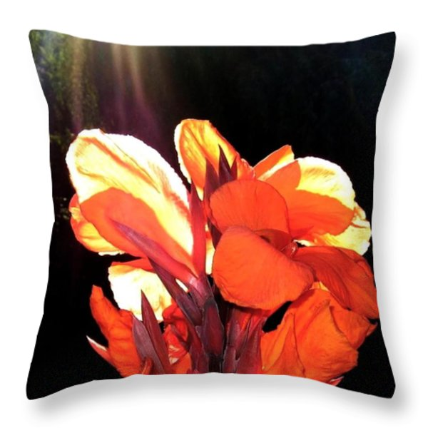 Canna Lily Throw Pillow by Will Borden