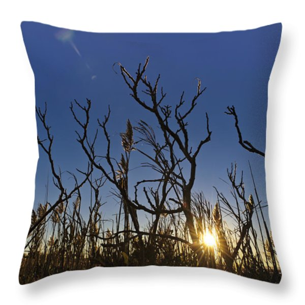 Cape Cod Marsh At Sunset Throw Pillow by Marianne Campolongo