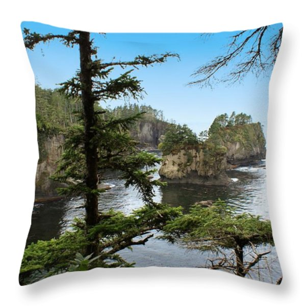 Cape Flattery Throw Pillow by Christy Leigh