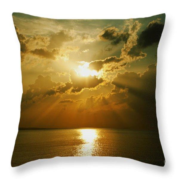 Carpe Diem Throw Pillow by Andrew Paranavitana