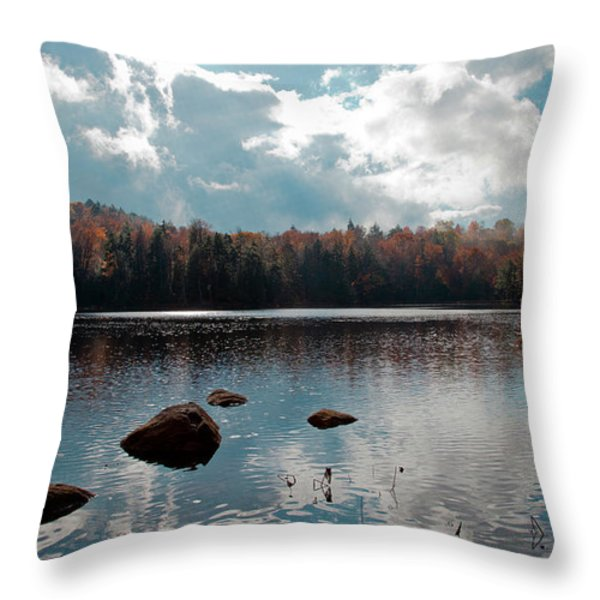 Cary Lake Throw Pillow by David Patterson