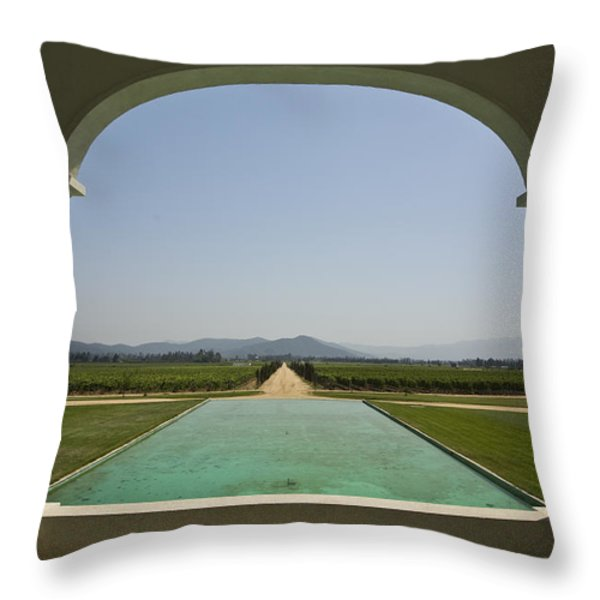 Casablanca Valley, A Wine Growing Throw Pillow by Richard Nowitz