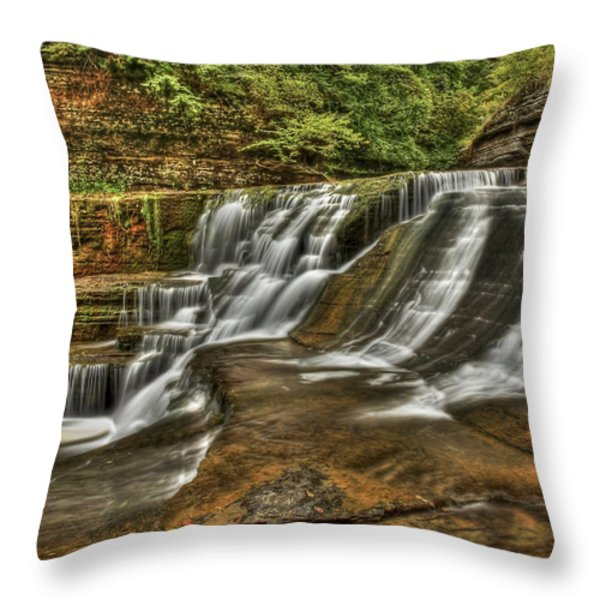 Cascades Throw Pillow by Evelina Kremsdorf