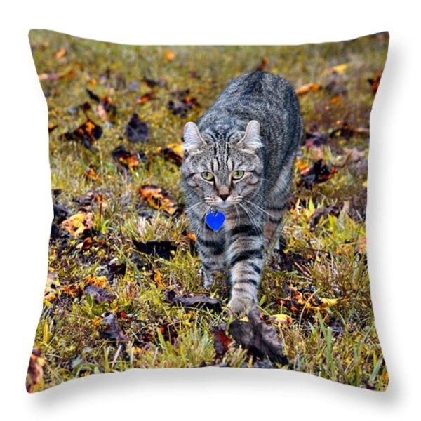 Cat In Autumn Throw Pillow by Susan Leggett