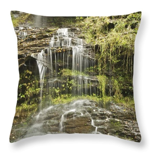 Cathedral Falls 3249 Throw Pillow by Michael Peychich