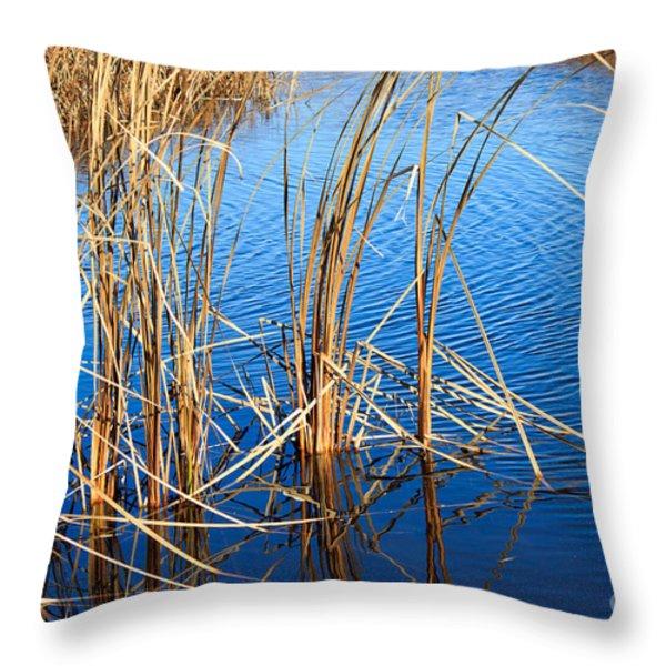 Cattail Reeds Throw Pillow by Ms Judi