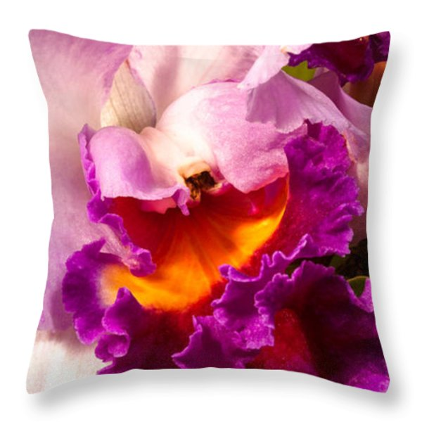 Cattleya III Throw Pillow by Christopher Holmes
