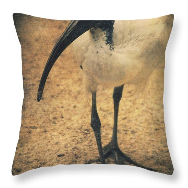 Catwalk Throw Pillow by Angela Doelling AD DESIGN Photo and PhotoArt