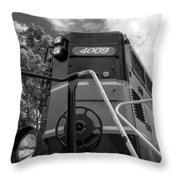 Ccgx  4009 14950b Throw Pillow by Guy Whiteley