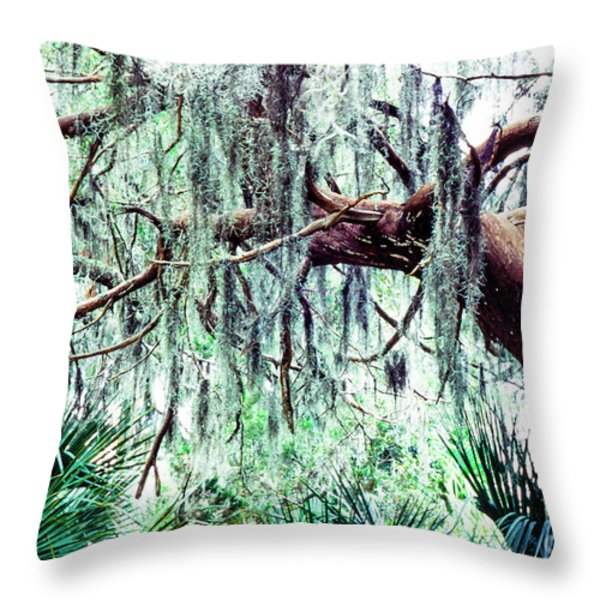 Cedar Draped In Spanish Moss Throw Pillow by Thomas R Fletcher