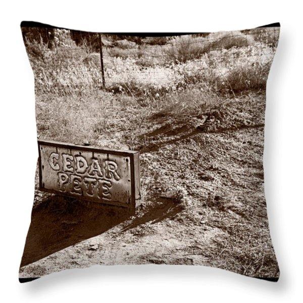 Cedar Pete Gravesite In Grafton Utah Throw Pillow by Steve Gadomski