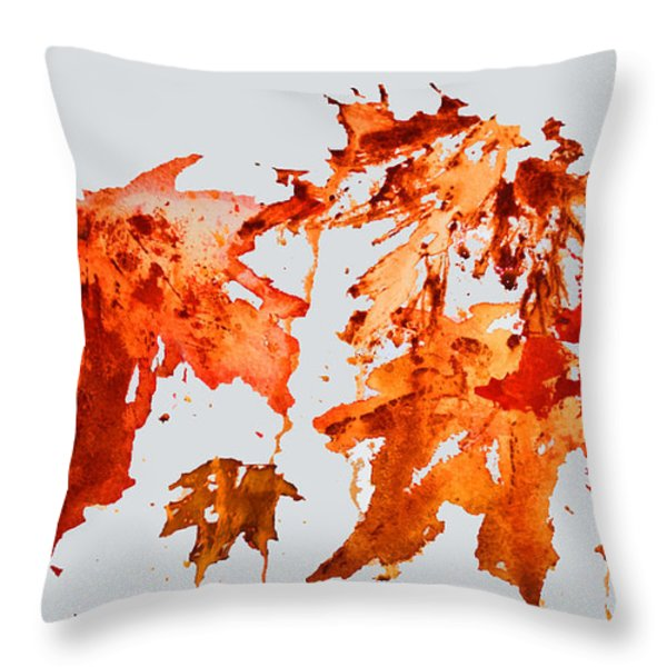 Changing Season Throw Pillow by Barbara McMahon