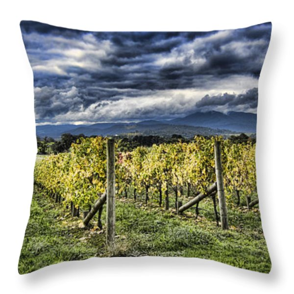 Chardonnay Vines Throw Pillow by Douglas Barnard