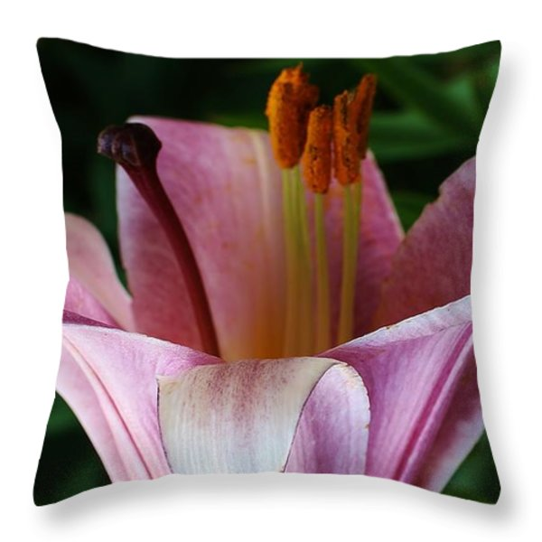 Charming Lily Throw Pillow by Bruce Bley