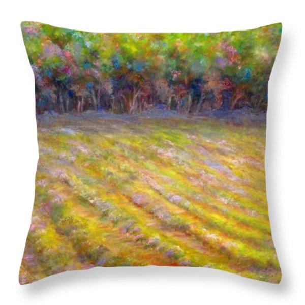 Chateau De Berne Vineyard Throw Pillow by Bonnie Goedecke