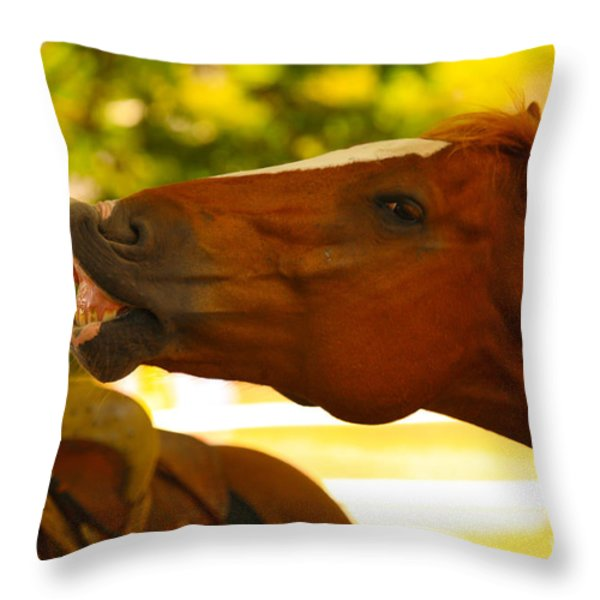 Cheese Throw Pillow by Cheryl Young
