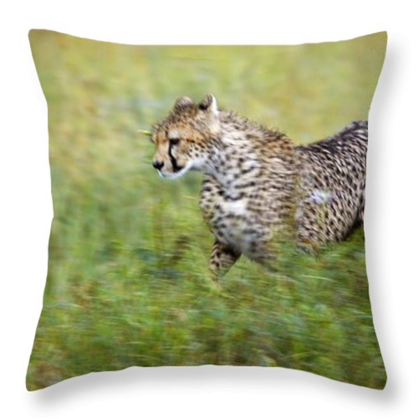 Cheetah Acinonyx Jubatus, Running Throw Pillow by Carson Ganci