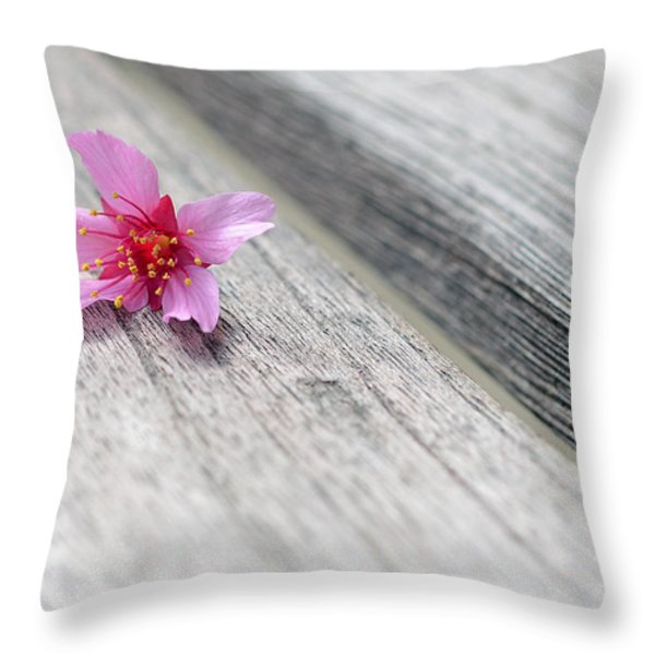 Cherry Blossom on Bench Throw Pillow by Lisa  Phillips