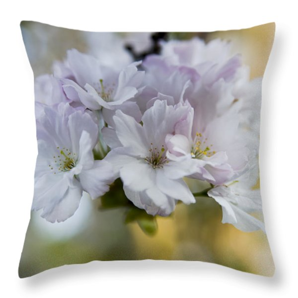 Cherry blossoms Throw Pillow by Frank Tschakert