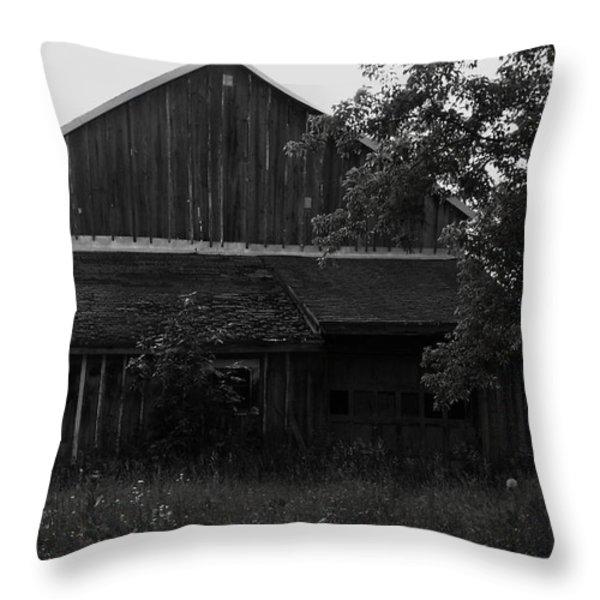Chet's Barn Throw Pillow by Anna Villarreal Garbis
