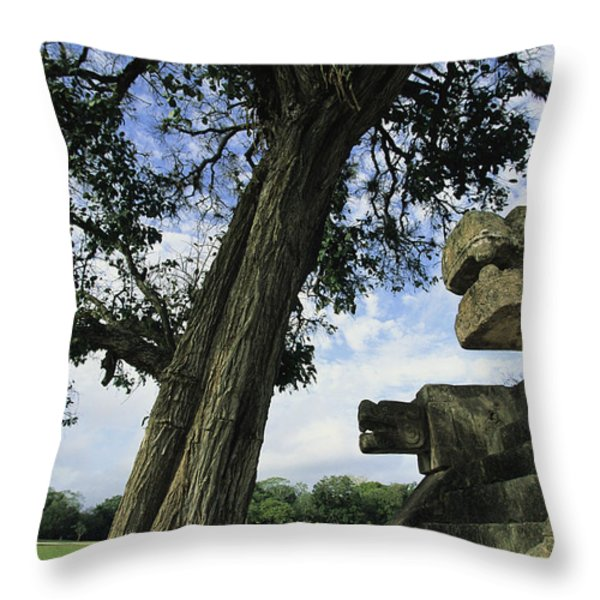 Chichen Itza Scene Throw Pillow by Steve Winter