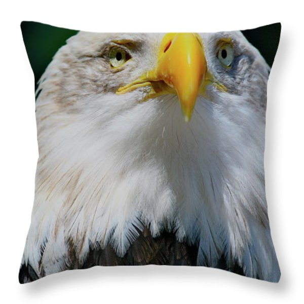 Chin Up Throw Pillow by Laddie Halupa
