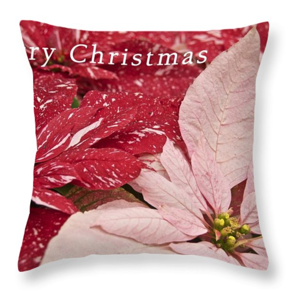 Christmas Poinsettias Throw Pillow by Michael Peychich