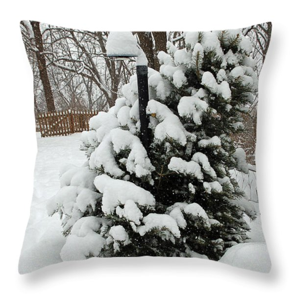 Christmas Tree Throw Pillow by Aimee L Maher Photography and Art