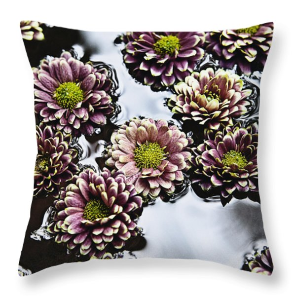 Chrysanthemum 3 Throw Pillow by Skip Nall