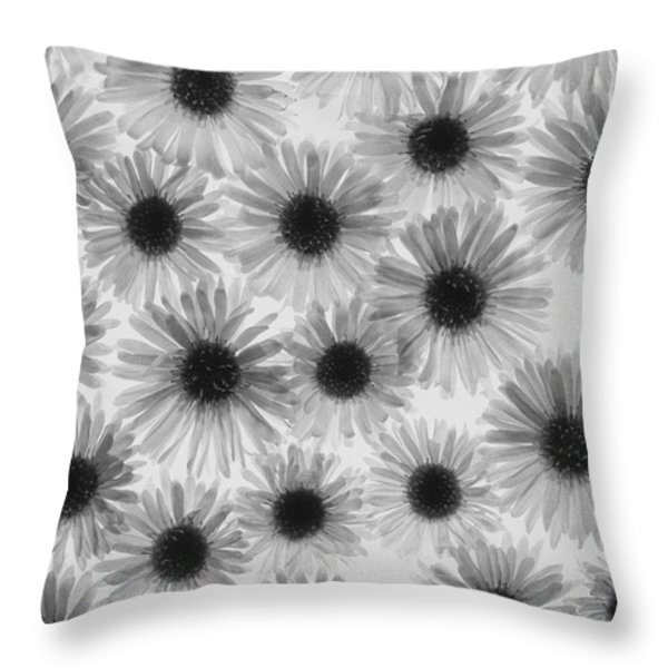 Chrysanthemum Flowers Throw Pillow by Graeme Harris