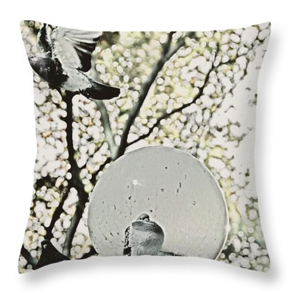 CITY DOVES Throw Pillow by JAMART Photography