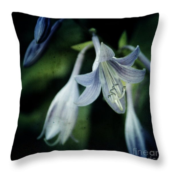 Cladis 02s Throw Pillow by Variance Collections