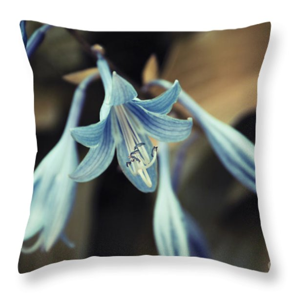 Cladis 22 Throw Pillow by Variance Collections