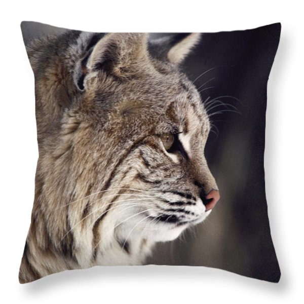 Close-up Of A Bobcat Felis Rufus Throw Pillow by Dr. Maurice G. Hornocker