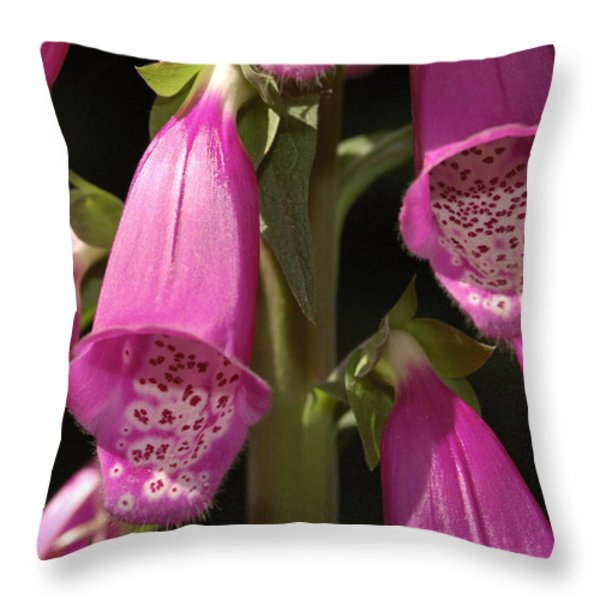 Close Up Of Foxglove Digitalis Flowers Throw Pillow by Darlyne A. Murawski
