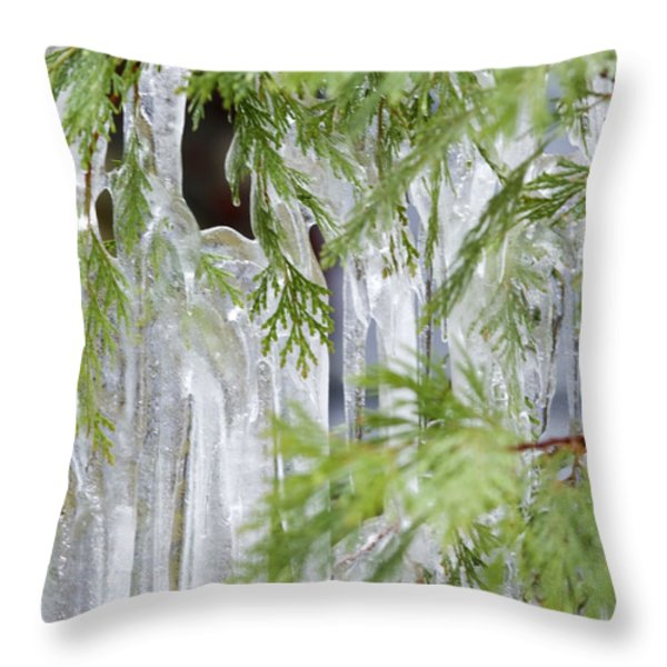 Close-up Of Ice Covered Tree Branch Throw Pillow by James Forte