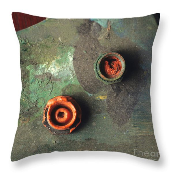 Close up of palette. Throw Pillow by BERNARD JAUBERT