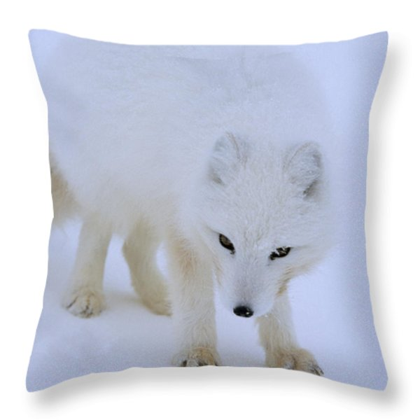 Close Up Portrait Of A White Arctic Throw Pillow by Norbert Rosing
