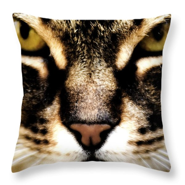 Close Up Shot Of A Cat Throw Pillow by Fabrizio Troiani